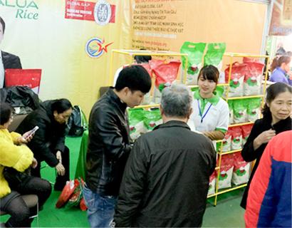 Hoa Lua Rice Attendance at Spring Festival 2017